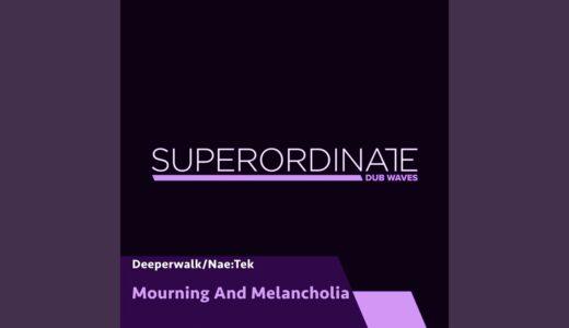 ダブテクノ専門レーベル<Superordinate Dub Waves>から、ボス Nae:Tek がEPリリース