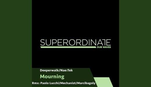 ダブテクノ専門レーベル<Superordinate Dub Waves>から Nae:Tek と Deeperwalk によるEPリリース