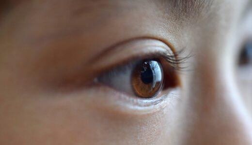 瞳孔がデカいほど頭が良い!?ジョージア工科大学の驚くべき研究結果