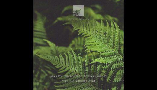 【Ambient】Amanita Phalloides と Heavenchord が溶けるようなアンビエントEPをリリース