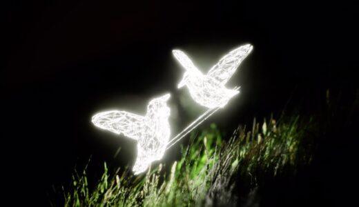 "Porter Robinson、デジタルアーティストJie Liouによる ""dullscythe"" のビジュアライザービデオ公開"